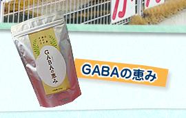 GABAの恵み