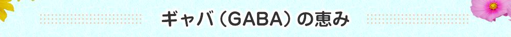 ギャバ(GABA)の恵み